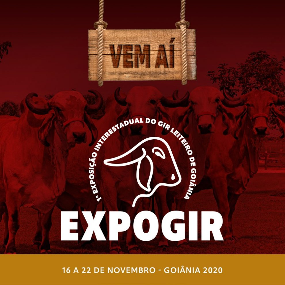 1° EXPO GIR LEITEIRO REÚNE MAIS DE 250 ANIMAIS DE ELITE EM GOIÂNIA.